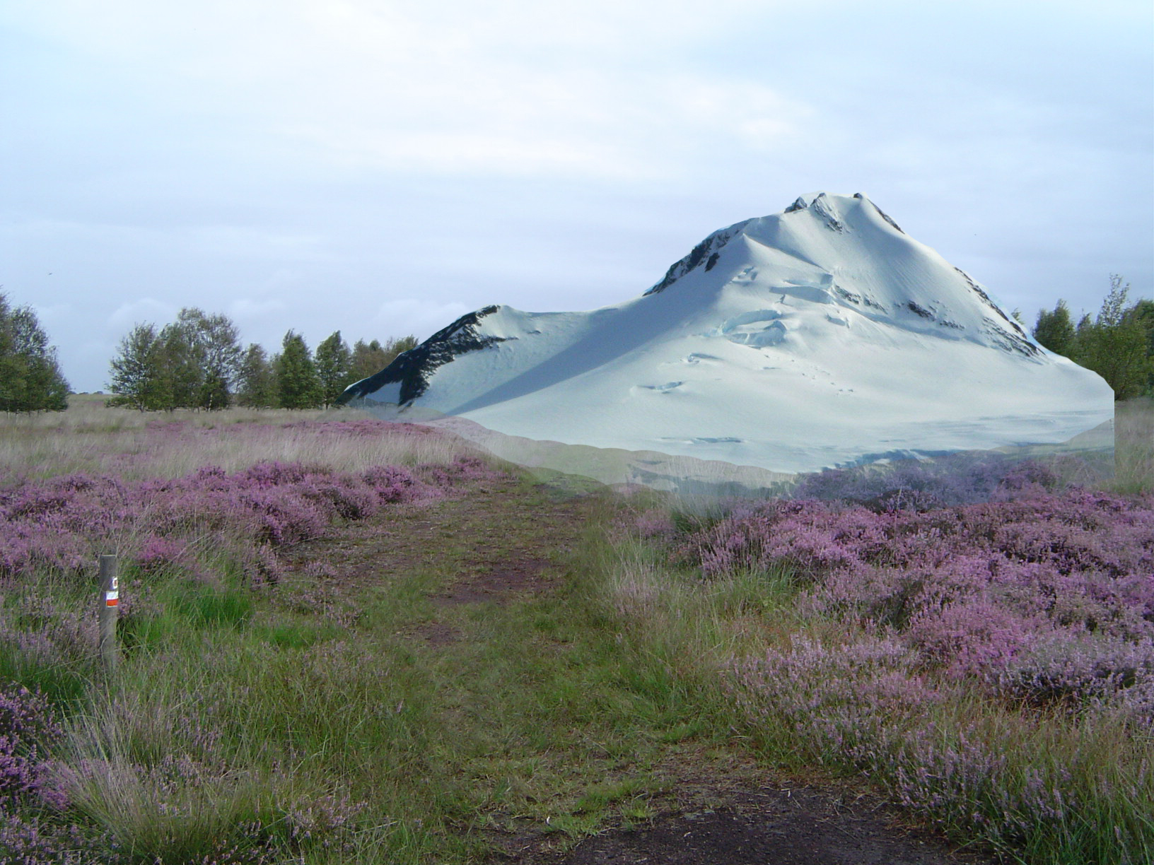 Mountain in the Veluwe